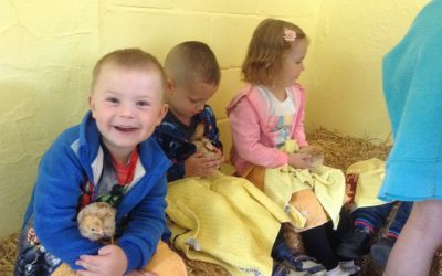 Nursery's visit to the farm. What an adventurous day!
