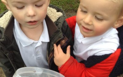 We have enjoyed time in the mud kitchen, having a numicon race and finding a ladybird in our garden!