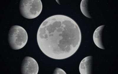 Edible Phases of the Moon!
