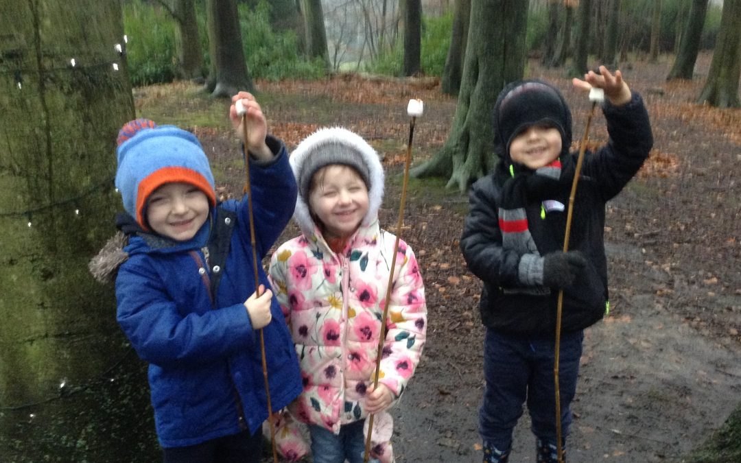 Autumn Fun at Gibside