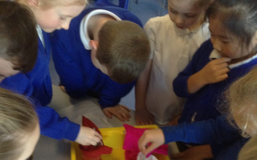 Investigating which coat would be the best for the Arctic.