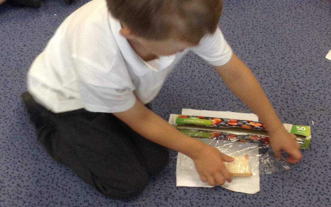 Science Investigation – what shall I wrap my sandwiches in?